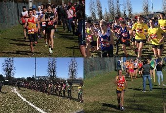 Cross de Caussade - Demi-finale Championnat de France